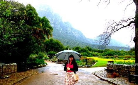 Rainy Botanic Gardens Cape Town