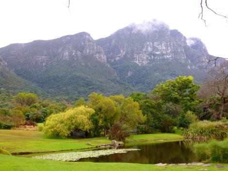 Cape Town Botanic Gardens