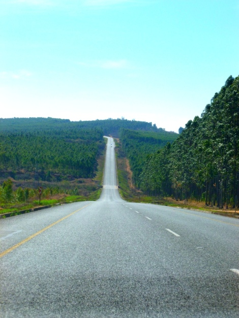 Drive to the Sabi Sands