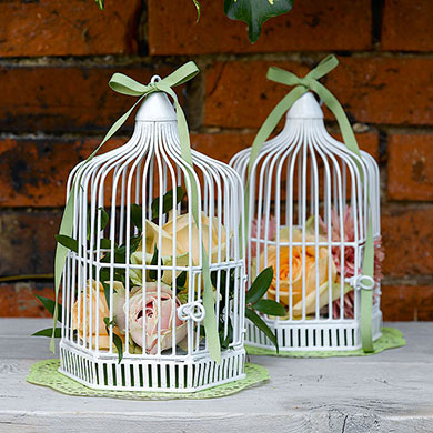 Bird Cage Aisle Liners